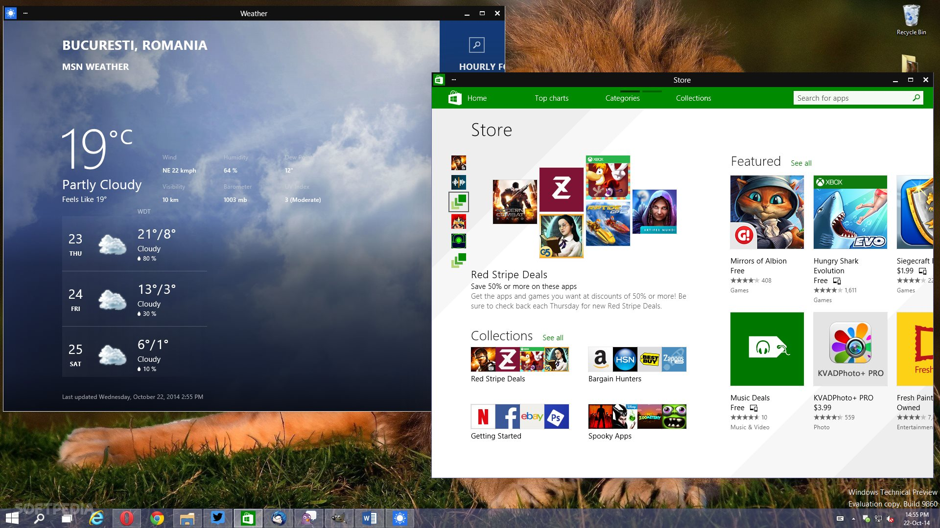 New Windows 10 build