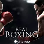 Real boxing for PC