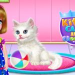 Kitty Care and Grooming for PC
