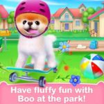 Boo: The cutest dog for PC